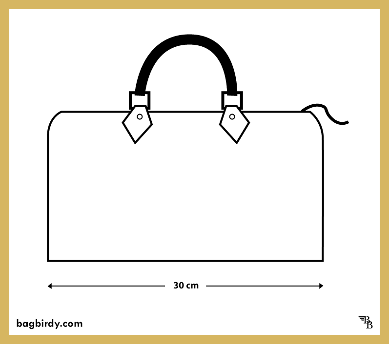 Louis Vuitton speedy 30cm handbag with dimensions