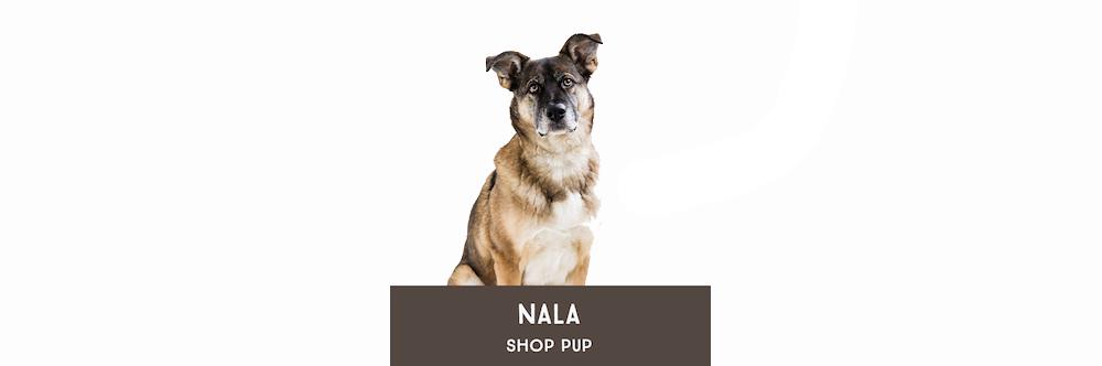 Nala Shop Dog